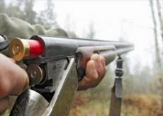 Житель Марий Эл, убивший двух лосей, обвиняется в незаконной охоте